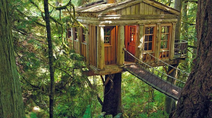 Eco Traveling – The Most Amazing Treehouses in the World